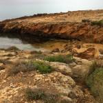 Platgetes de Binimel·là